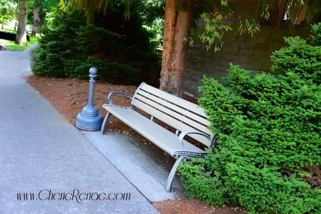 This bench has the best breeze. A man, not you, showed it to me, and we sat and talked. About you.